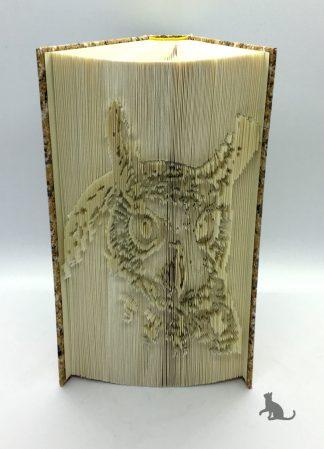 Buch Eule aus Petras Bastelecke