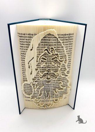 Buch Weihnachtsmann