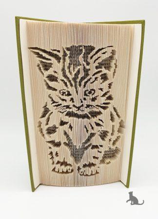 Buch Katze